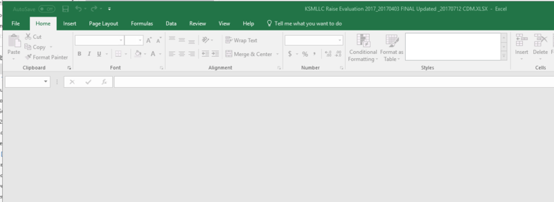 Excel Spreadsheet Won t Open But Visible In Preview