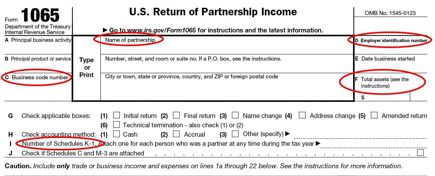 Form 1065 Instructions Information For Partnership Tax