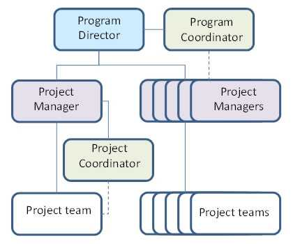 Project Director Or Project Manager Pandanus Consulting