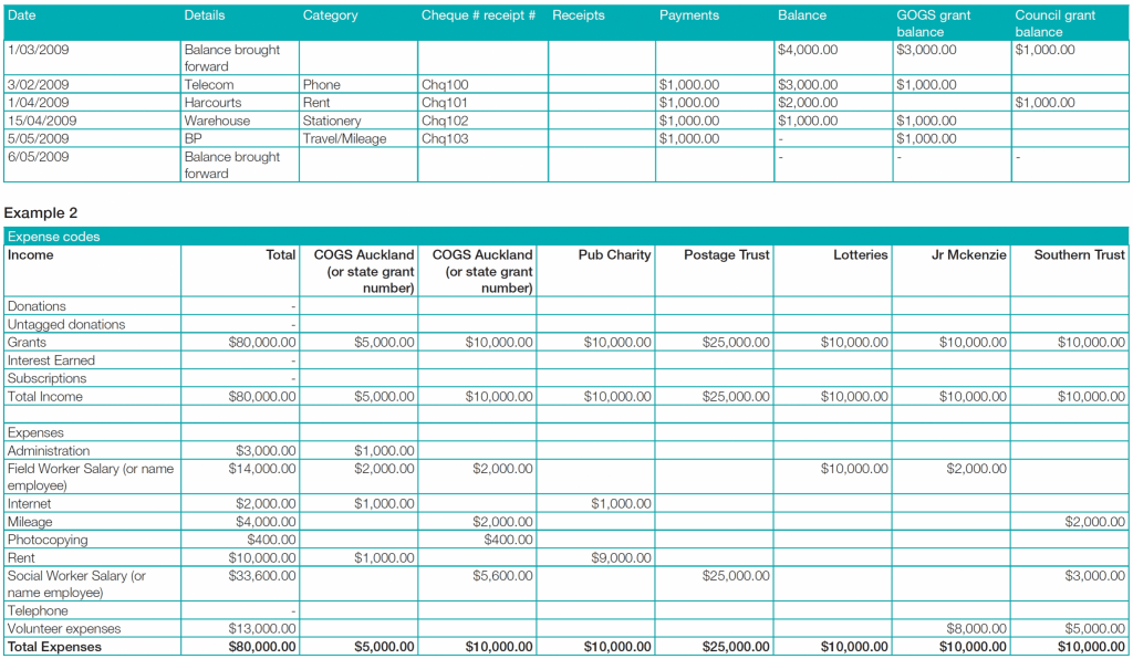 Printable Communitynet Aotearoa Financial Reporting In