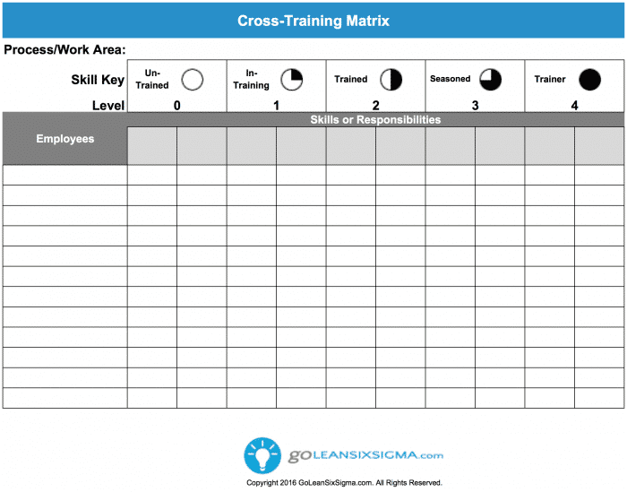 Cross Training Matrix Template Example