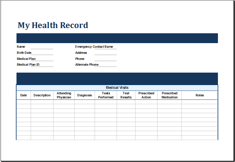 MS Excel Personal Medical Health Record Template Excel