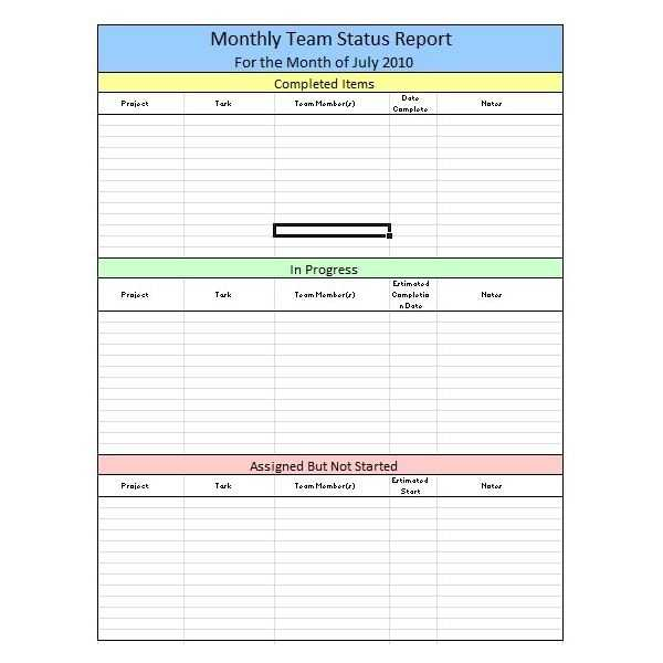 Sample Team Monthly Report Template In Excel Free