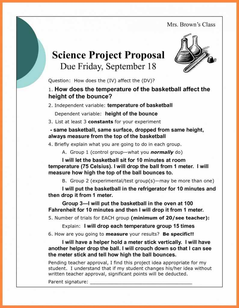Strawman Proposal Template Business Template Ideas