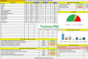 One Page Project Manager Template Excel Project