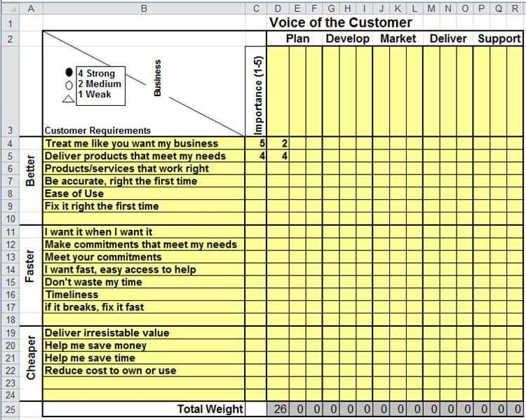 Voice Of The Customer Matrix Excel Excel