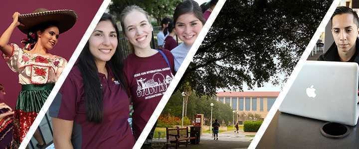 What Can You Do With A Online Colleges in Texas for Business Degree